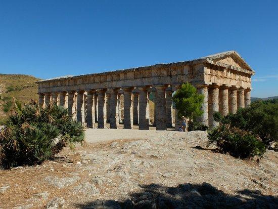 Tempio di Segesta (Tempio Influenza Greca): Magnificent