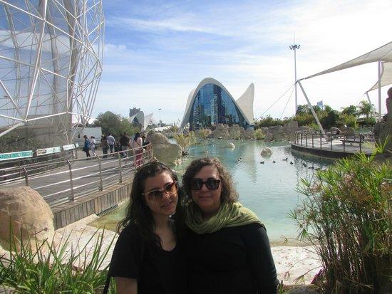 Valenciaflats Ciudad de las Ciencias : panoramica