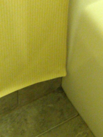 Comfort Inn & Suites Airport & Expo: Wall Paper falling off wall