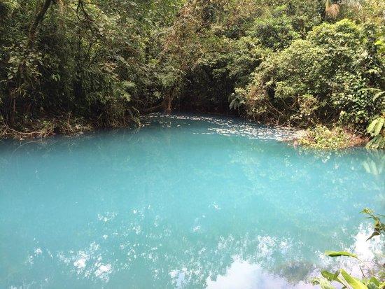 One Day trip To Rio Celeste
