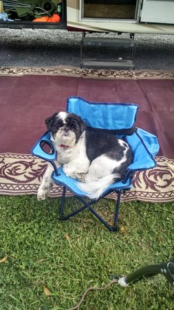 Harpers Ferry KOA: loves camping