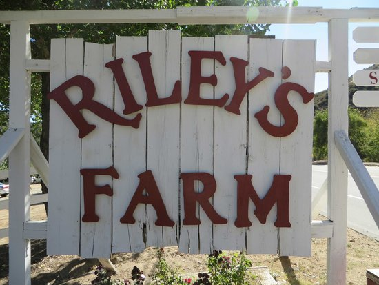 Riley's Farm: Sign, you can't miss it.