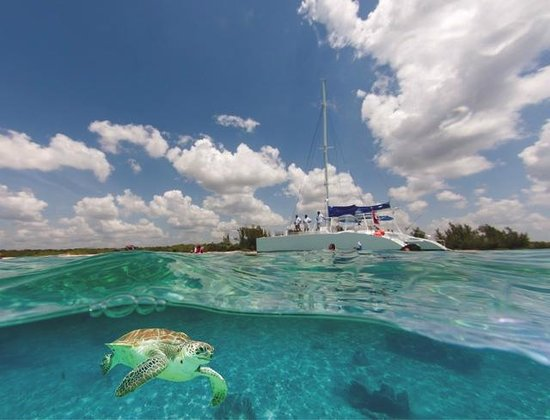 Paradise Catamarans