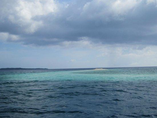 Barasu Island : 2/4:し、島か!?