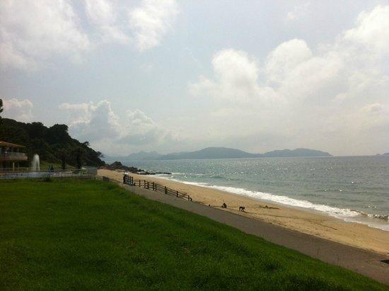 Shikanoshima : 休暇村あたりの海岸