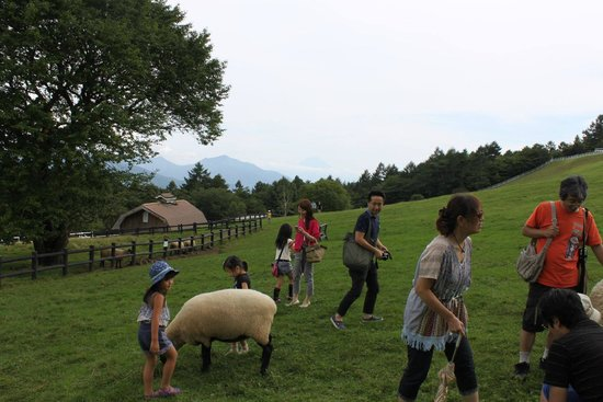 Makiba Park : まきば公園