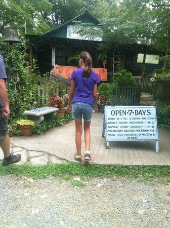 Wildflower Cafe : going in