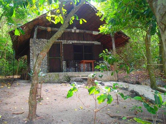 Tranquillity Island Resort & Dive Base: Beach Lodge