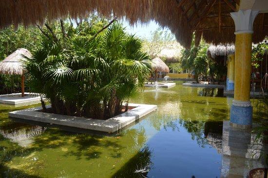 IBEROSTAR Paraiso Del Mar: lake