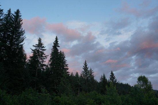 Glacier Creek Lodge: View from patio