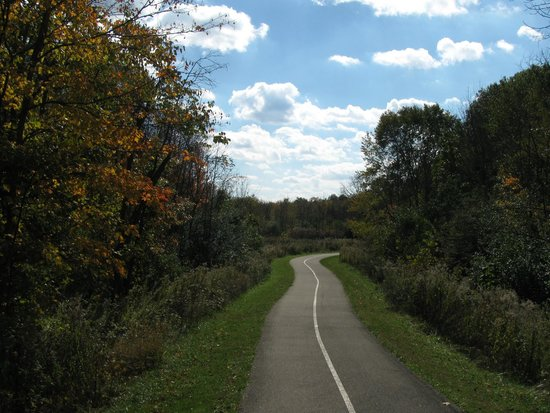 Busse Woods Trail System: perfect Busse Woods day