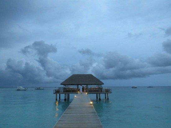 Velassaru Maldives: Amazing ��