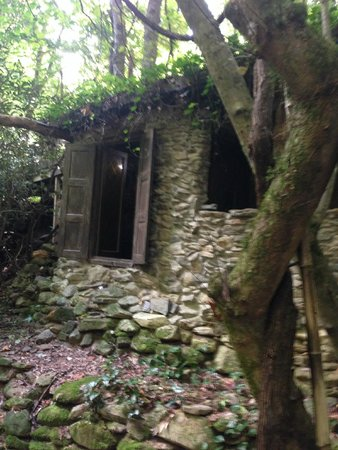 treehouse - Picture of Mountain Light Sanctuary