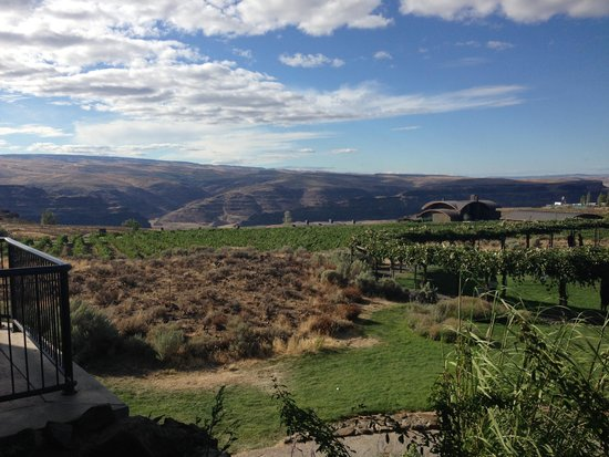 Cave B Estate Winery Quincy Tasting Room: The View