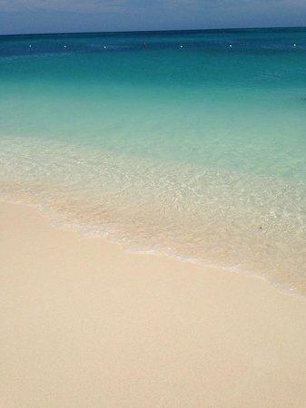 Manchebo Beach Resort & Spa : Beach water