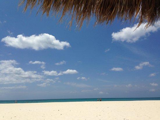 Manchebo Beach Resort & Spa : Relax