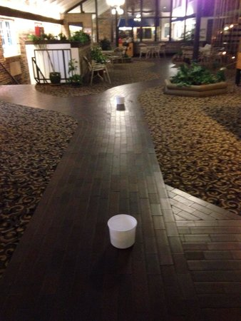 Best Western Plus Longbranch Hotel & Convention Center: Buckets catching rain on rec area