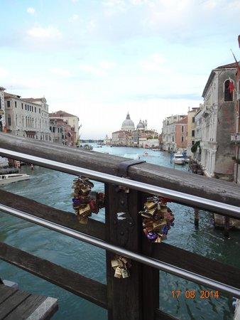 Canal Grande: Ponte dell' Accademia
