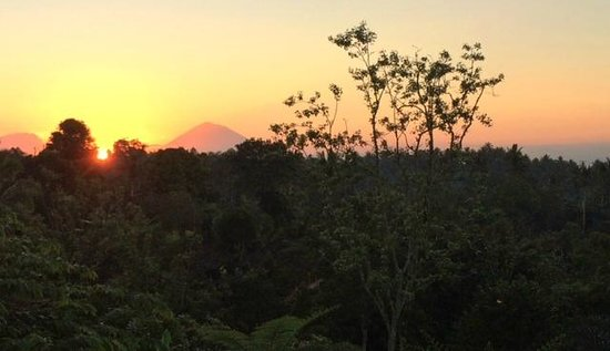 Bali Mountain Retreat : Sunrise from 'The Bird's Nest'