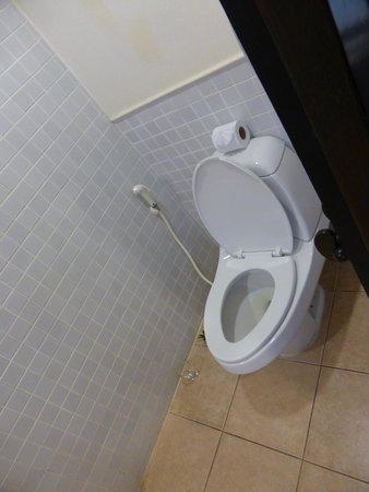 Bandara Resort & Spa: the toilet opposite the shower