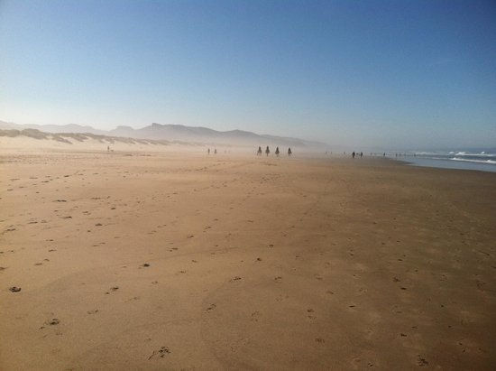 San Dune Inn: The Four Horse (wo)men Cometh - Nehalem Bay in Manzanita