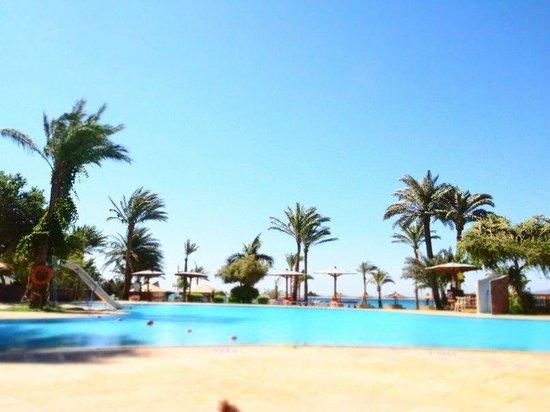 Ibis Styles Dahab Lagoon: Вид на бассейн, дальше за бассейном  прекрасная лагуна)