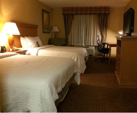 Hilton Garden Inn Chicago/Tinley Park: Hotel room