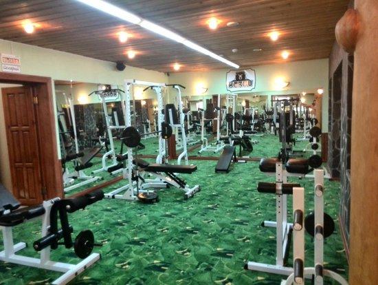 Medvezhka Hotel: Тренажерный зал