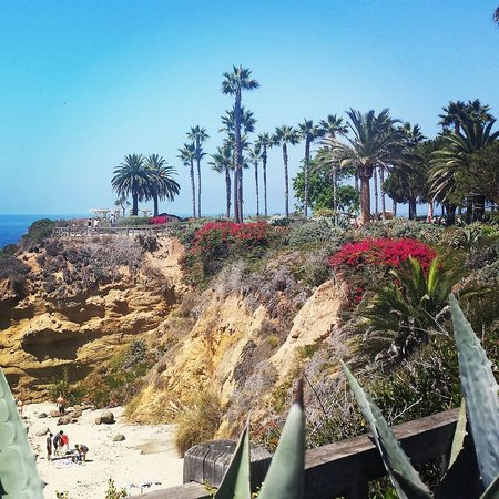 Montage Laguna Beach : Cliffside View!