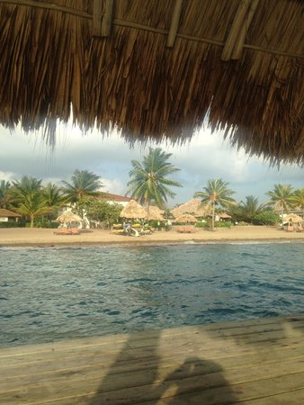 Jaguar Reef Lodge & Spa: View of the resort from their outdoor dock.