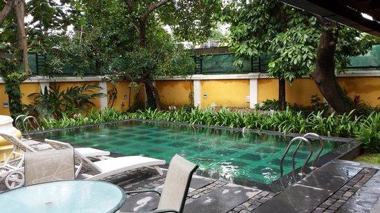 Tea Bungalow : Excelente piscina