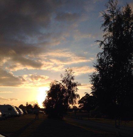Woodland Waters: Setting sun