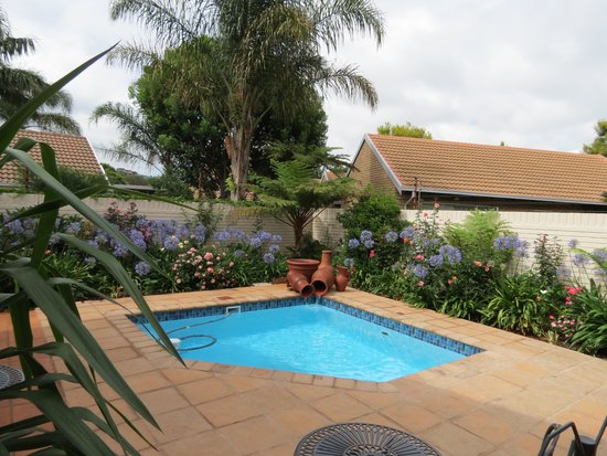 Touraco Guesthouse: Swimming Pool