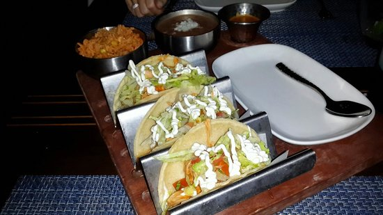 Maya Modern Mexican Kitchen + Lounge: Chicken tacos tinga