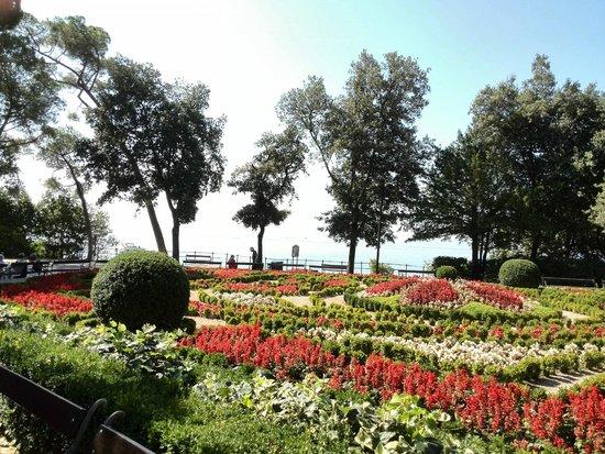 Hotel Agava: Парк возле отеля