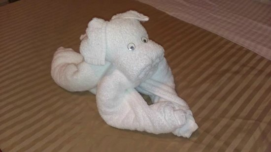 Baldwin Hotel: タオルアート・子犬