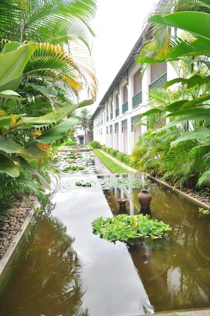 The Grand Luang Prabang Hotel & Resort: จากหน้า Front เพื่อเดินไปยังห้องพัก ก็จะเจอทางเดินแล้วก็มีสระบัวแบบนี้