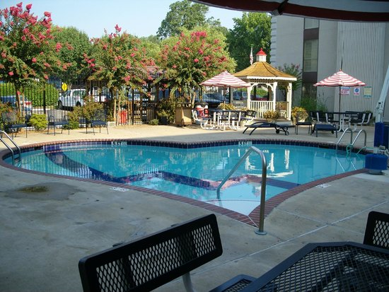Elvis Presley's Heartbreak Hotel: Der Pool früh am Morgen
