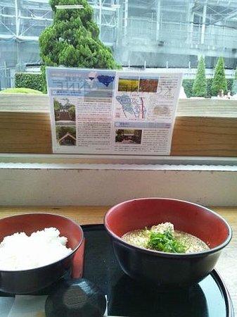 Shinjuku Miyazakikan Konne Keishoku Corner: 冷や汁定食