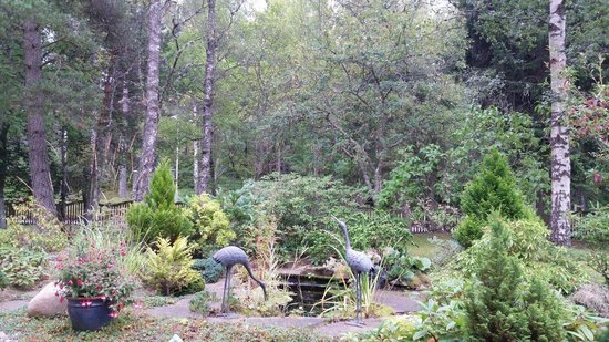 Bed and Breakfast at MellonPatch: Front garden