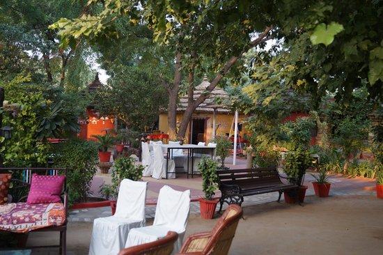 Mandore Guest House : Garden Bunglow