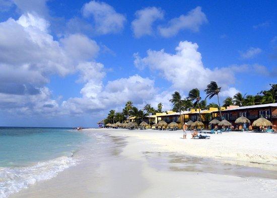 The divi beach picture of tamarijn aruba all inclusive - Divi aruba and tamarijn aruba ...