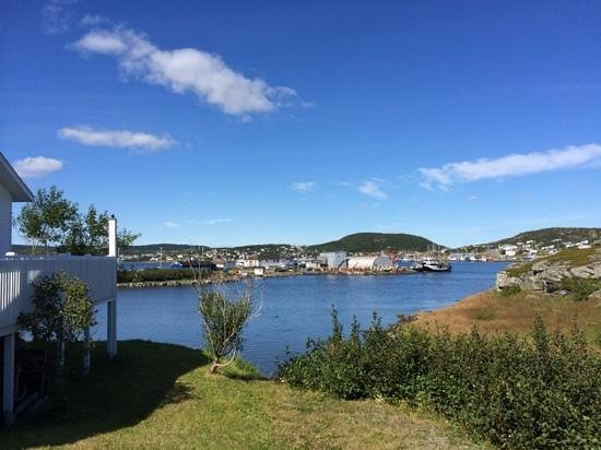 Snuggle Inn Cottage Suites: view of St Anthony harbour