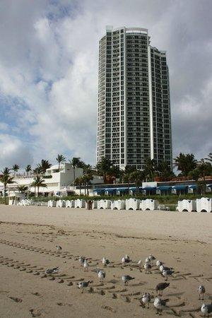 Trump International Beach Resort: Вид на отель с пляжа