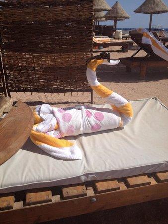 Sharm Grand Plaza : More towel art