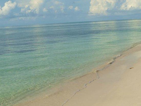 Viva Wyndham Fortuna Beach: mare spiaggia