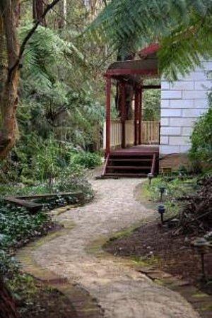 Fernglen Forest Retreat: Fernglen Cottage