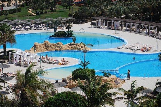 Sheraton Fuerteventura Beach, Golf & Spa Resort : View of the pool