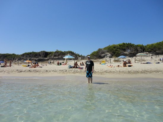 IBEROSTAR Albufera Playa : beach