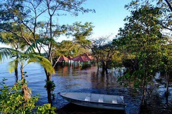 Manaus, AM: Praia do Tupé no período da cheia